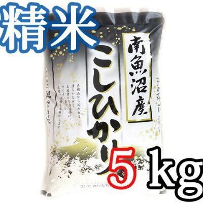 南魚沼 塩沢産コシヒカリ 精米5kg