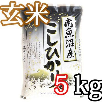 南魚沼 塩沢産コシヒカリ 玄米5kg