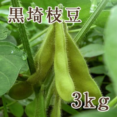 新潟産 黒埼枝豆 3kg