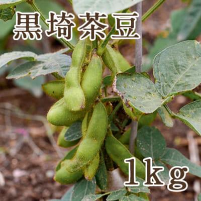 新潟産 黒埼茶豆 1kg