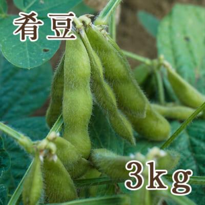 新潟産 肴豆 3kg