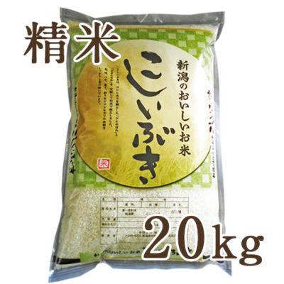 【定期購入】新潟産こしいぶき 精米20kg