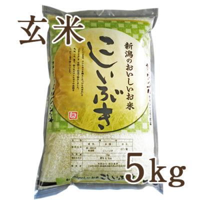 【定期購入】新潟産こしいぶき 玄米5kg