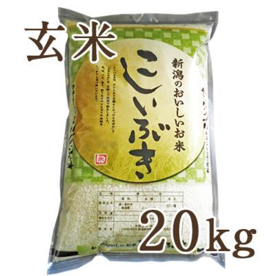 【定期購入】新潟産こしいぶき 玄米20kg
