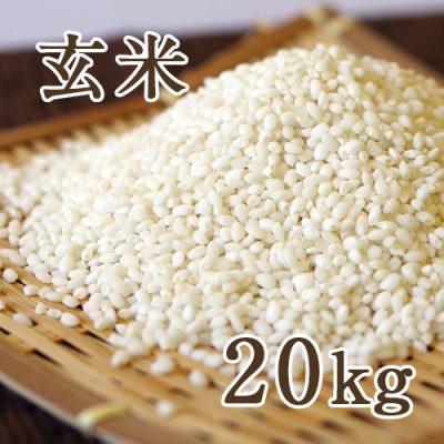 新潟産こがねもち 玄米20kg