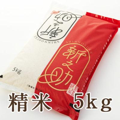 【定期購入】新潟産新之助 精米 5kg