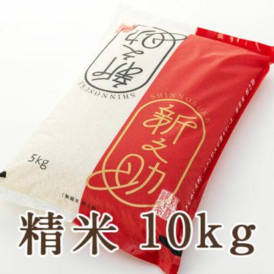 【定期購入】新潟産新之助 精米 10kg