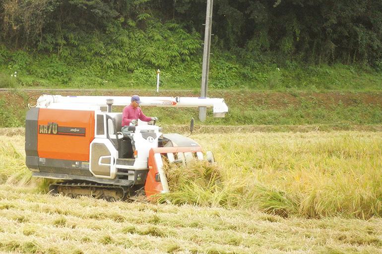 こだわりの特別栽培米