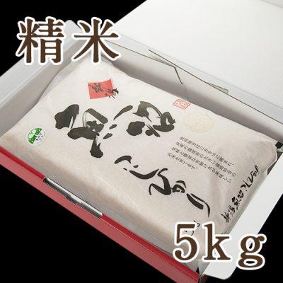 魚沼産 コシヒカリ 精米 5kg(化粧箱入り)
