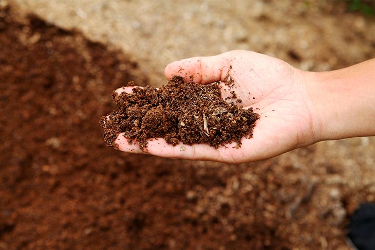肥沃な土壌を生かす有機質肥料