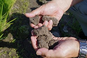 3.土壌にあった特注の有機肥料