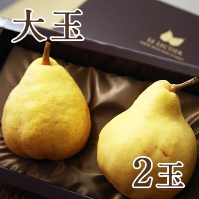 【贈答用 大サイズ】ル・レクチェ2玉
