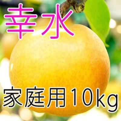 【家庭用】幸水10kg