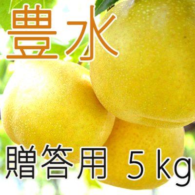 【贈答用】豊水5kg