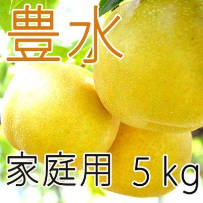 【家庭用】豊水5kg