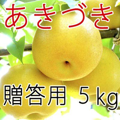 【贈答用】あきづき5kg