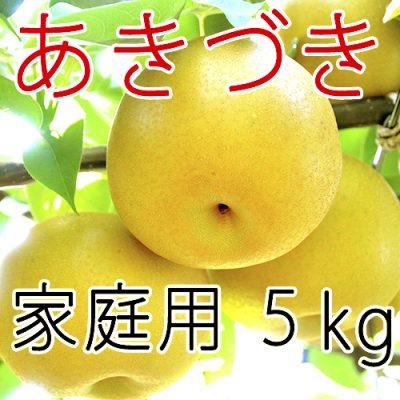 【家庭用】あきづき5kg