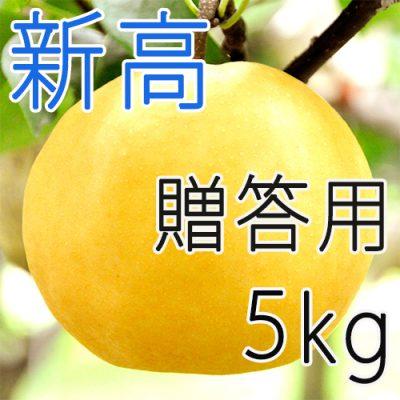 【贈答用】新高5kg