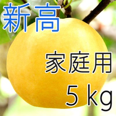 【家庭用】新高5kg