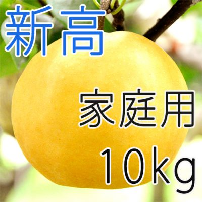 【家庭用】新高10kg