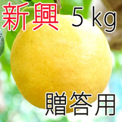 【贈答用】新興5kg