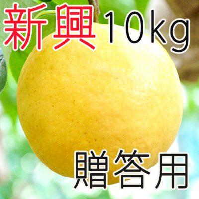 【贈答用】新興10kg
