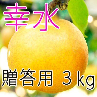 【贈答用】幸水3kg