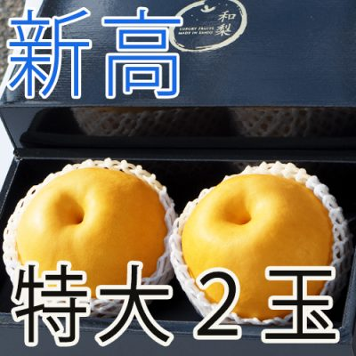 【贈答用 特大サイズ】新高2玉