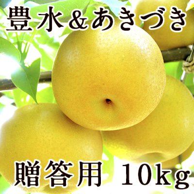 【贈答用】梨アソート 豊水&あきづき 10kg