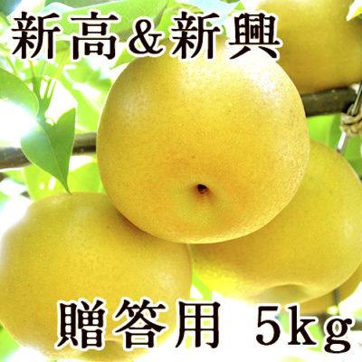 【贈答用】梨アソート 新高&新興 5kg