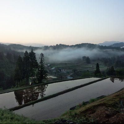 令和元年度米 魚沼産 棚田栽培 惣五郎米コシヒカリ(特別栽培米・従来品種)