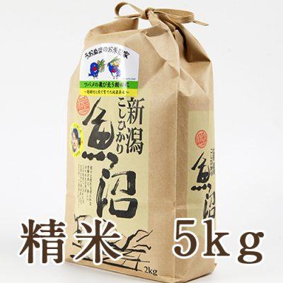魚沼産コシヒカリ ツバメの飛び交う棚田米 精米5kg