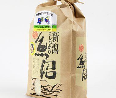 29年度新米 魚沼産 コシヒカリ「ツバメの飛び交う棚田米」(特別栽培米)