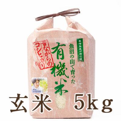 魚沼産コシヒカリ「魚沼の山で育った有機米」(JAS認証有機栽培米・従来品種)玄米5g