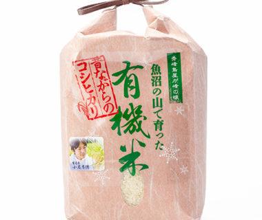 予約注文:令和2年度米 魚沼産 棚田栽培コシヒカリ(JAS認証有機栽培米・従来品種)