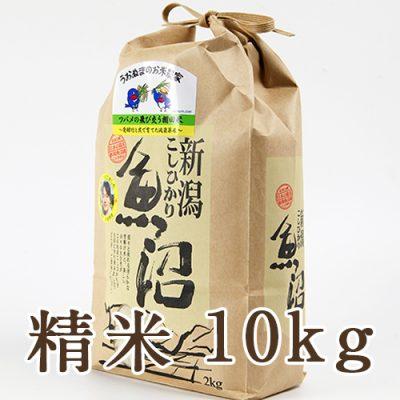 魚沼産コシヒカリ ツバメの飛び交う棚田米 精米10kg
