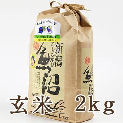 魚沼産コシヒカリ ツバメの飛び交う棚田米 玄米2kg
