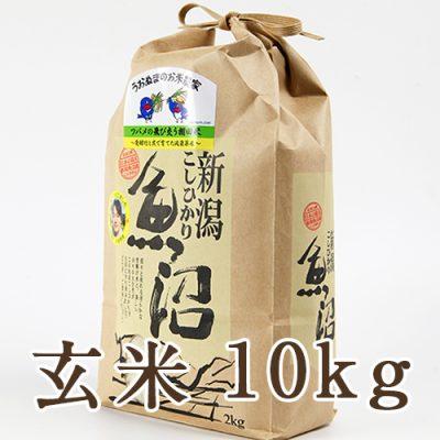 魚沼産コシヒカリ ツバメの飛び交う棚田米 玄米10kg