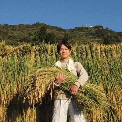 30年度米 魚沼産 コシヒカリ「ツバメの飛び交う棚田米」(特別栽培米)