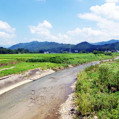 山の寒暖差と豊富なミネラル水がお米に甘味を与えます