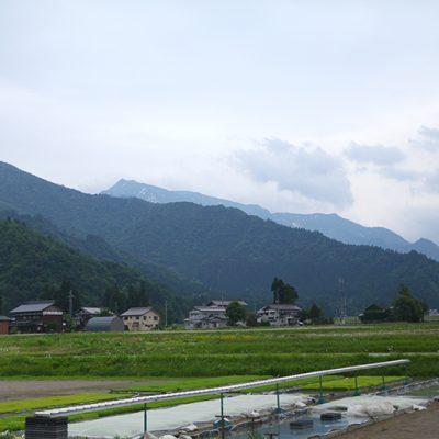 米作りに最適な環境が整っている旧塩沢町