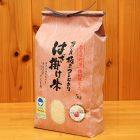 令和元年度米 南魚沼 塩沢産 はざ掛け米 コシヒカリ(特別栽培米)