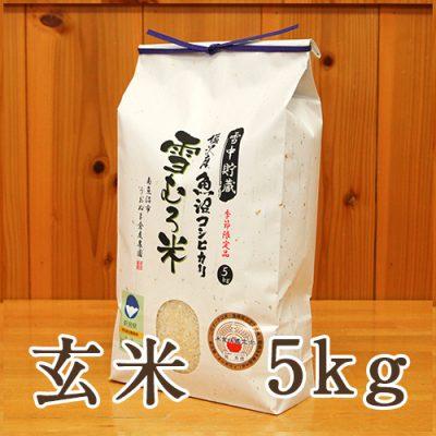 塩沢産 雪むろ米 コシヒカリ 玄米5kg