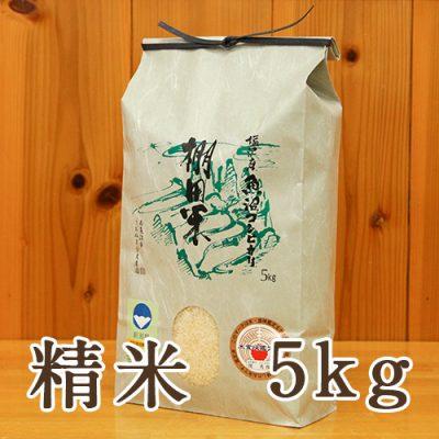 塩沢産 棚田米 コシヒカリ 精米5kg