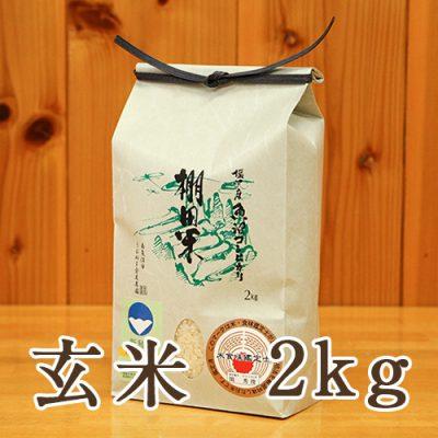 塩沢産 棚田米 コシヒカリ 玄米2kg