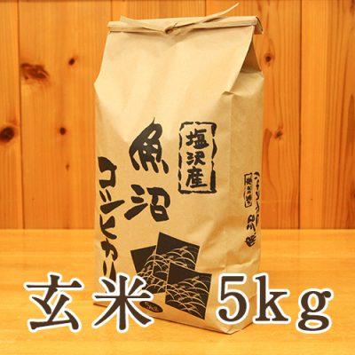 塩沢産 コシヒカリ 玄米5kg