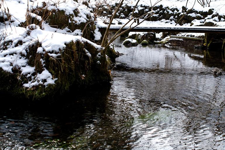1.ミネラル豊富な雪解け水が稲に栄養を与える