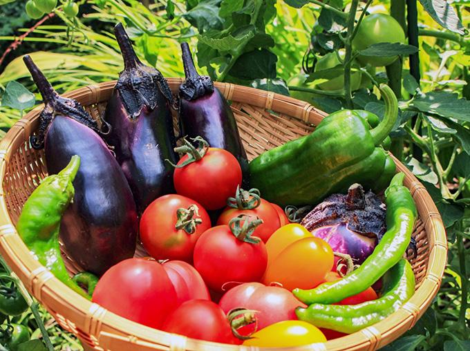農産物・野菜
