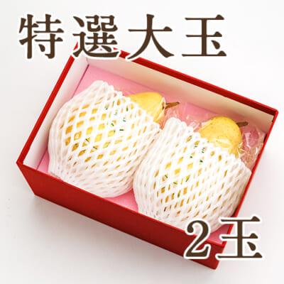 【特選大玉】ル・レクチェ 2玉