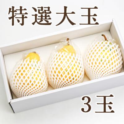 【特選大玉】ル・レクチェ 3玉